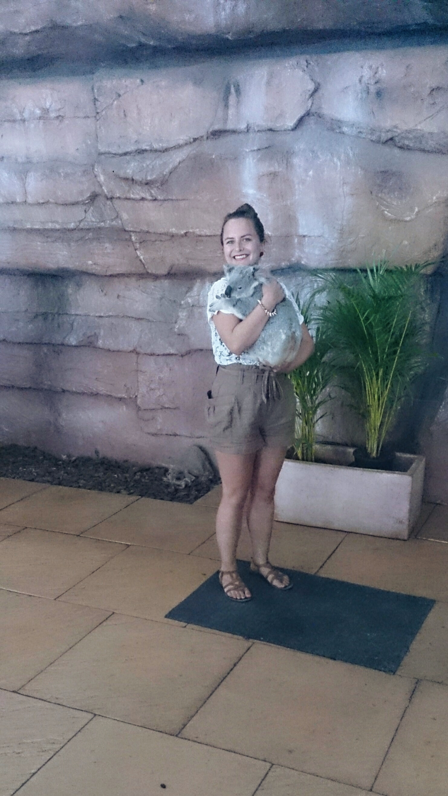Cuddling Koala at Australia Zoo Sunshine Coast