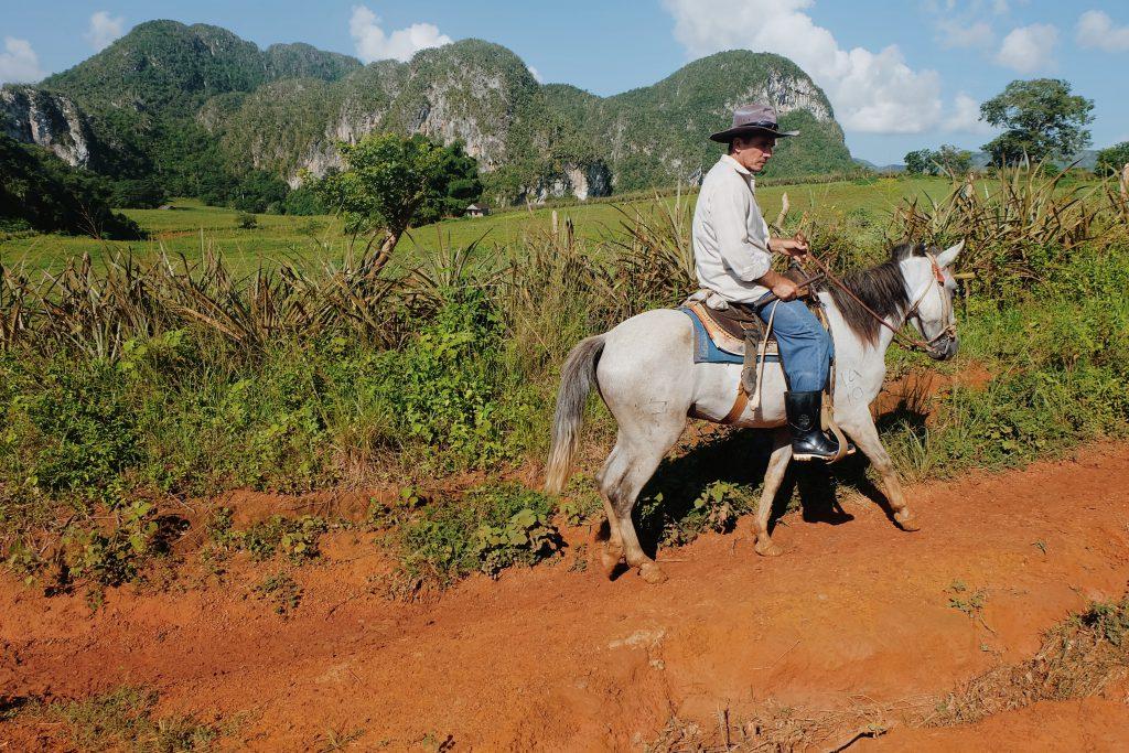 Horseback riding tour Viñales valley Cuba