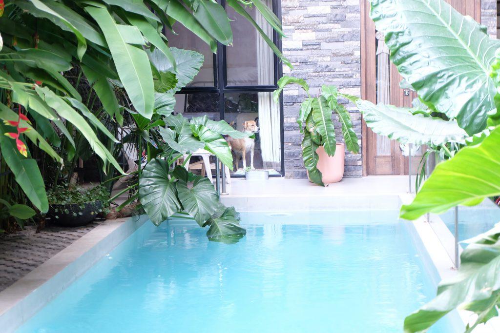 Hidden oase Airbnb Jakarta city Java