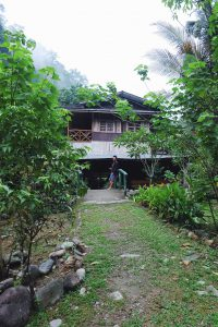 guest house Back To Nature Bukit Lawang Sumatra