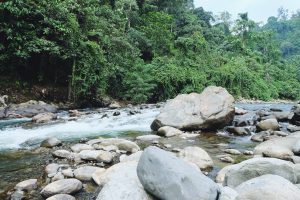 private beach Back To Nature Bukit Lawang river