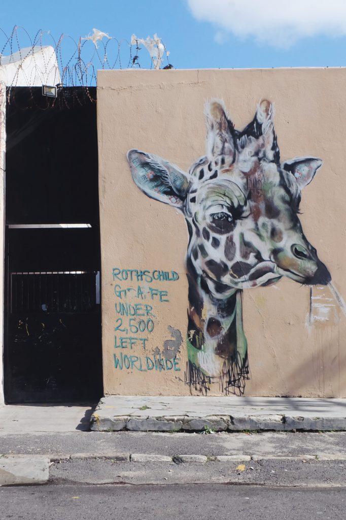 Woodstock street art tour Cape Town